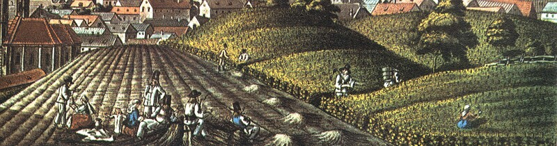 Peasants working in the wine-yard - detail of Schoffer's veduta representing Pest